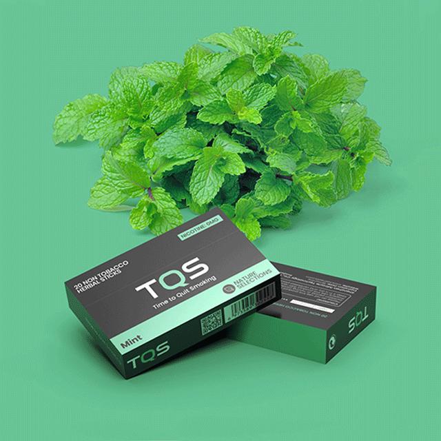 Новинка 2021 года, нагревательные табачные травяные палочки TQS, подходит для курения, не выжигает, наборы для вейпа