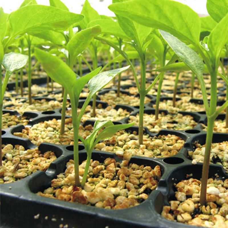 240 Cells Plant Plastic Seedling Tray,Seed Tray,Plug Tray