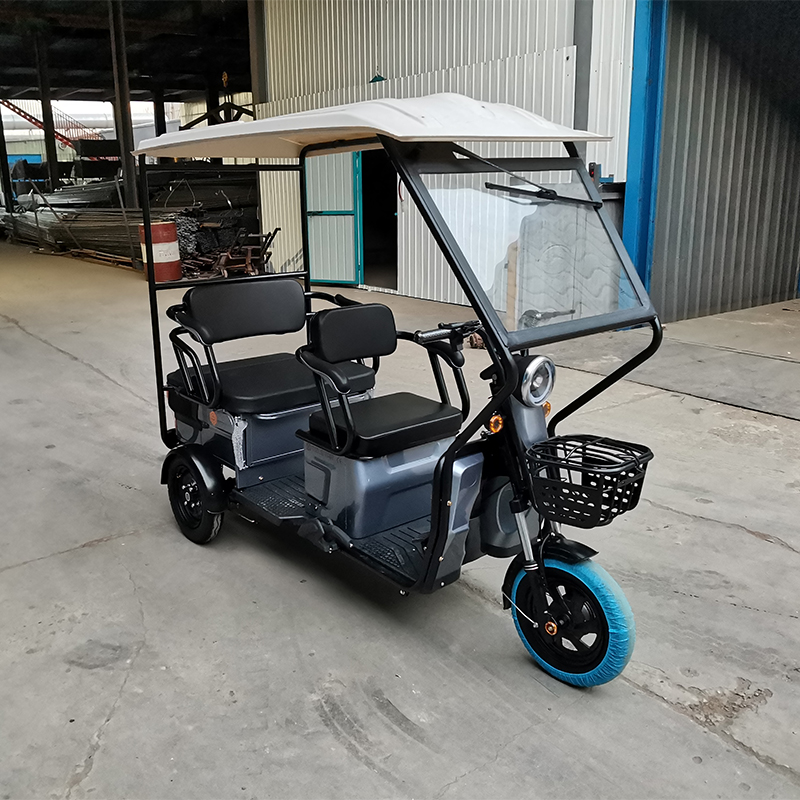 2021 electric scooter three wheels low speed disabled electric tricycle small e rickshaw for sale