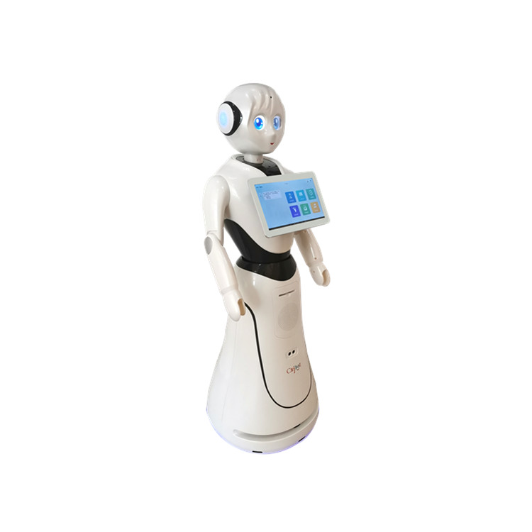 Top selling robot remoto control  intelligent humanoid robot for welcoming
