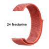 24 Nectarine