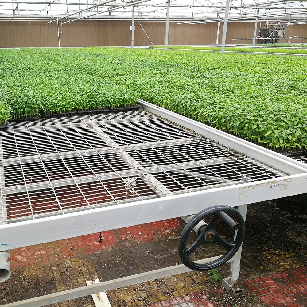 4ft * 10ft парниковых гидропоники стол отливом и потока прокатки скамья
