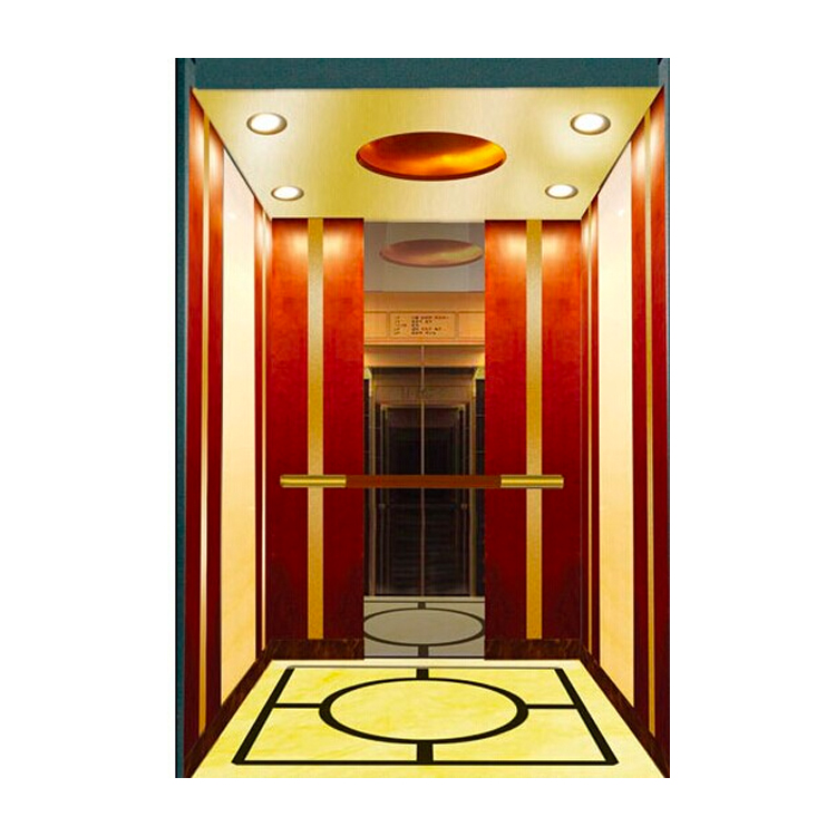 Resident Indoor Small Villa elevator and lift Homes