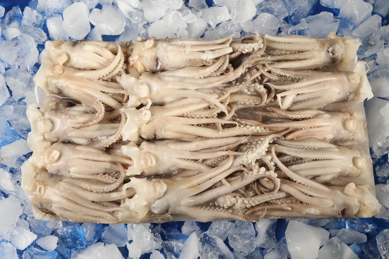 Блок замороженный кальмар щупальца