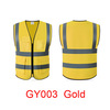 GY003 - GOLD