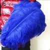 40-45cm blue