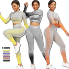 Seamless Quick Dry Yoga Set Sport Wear Suit Sport Clothing Fitness Sets Fitness Clothing Yoga Women Activewear Sets For Women