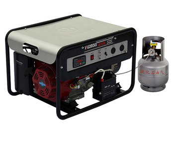 AC Single Phase 6KW Gas Generator 230V 50HZ With Natural Gas Or LPG For Home Use