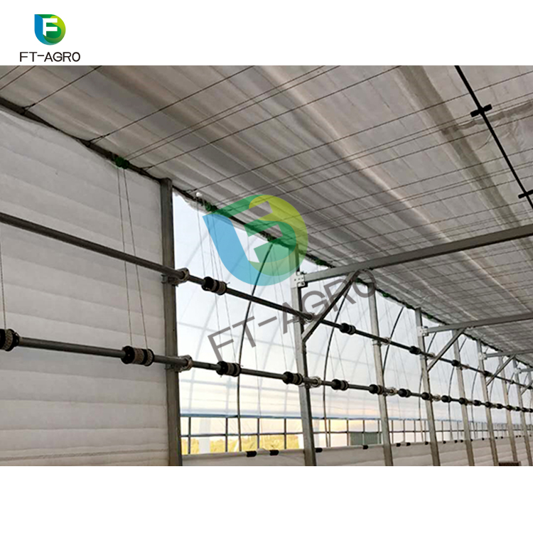 High quality Polyethylene plastic tunnel greenhouse for sale