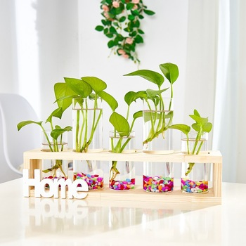 Test tube creative home decoration Wooden Stand glass hydroponic plants vase flower pots