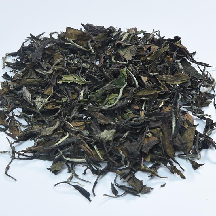 100% Natural Organic Bai Mu dan White Tea for wholesale - 4uTea | 4uTea.com