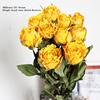 Military single-head roses 10 / beam