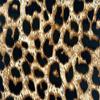 Leopard Print 4