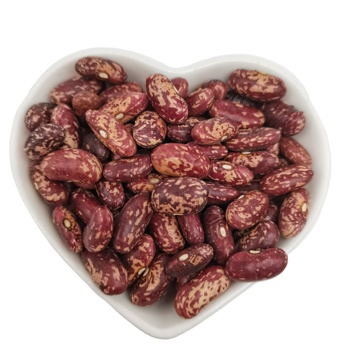 100% Natural Wholesale Price Dried Purple Speckled Kidney Bean