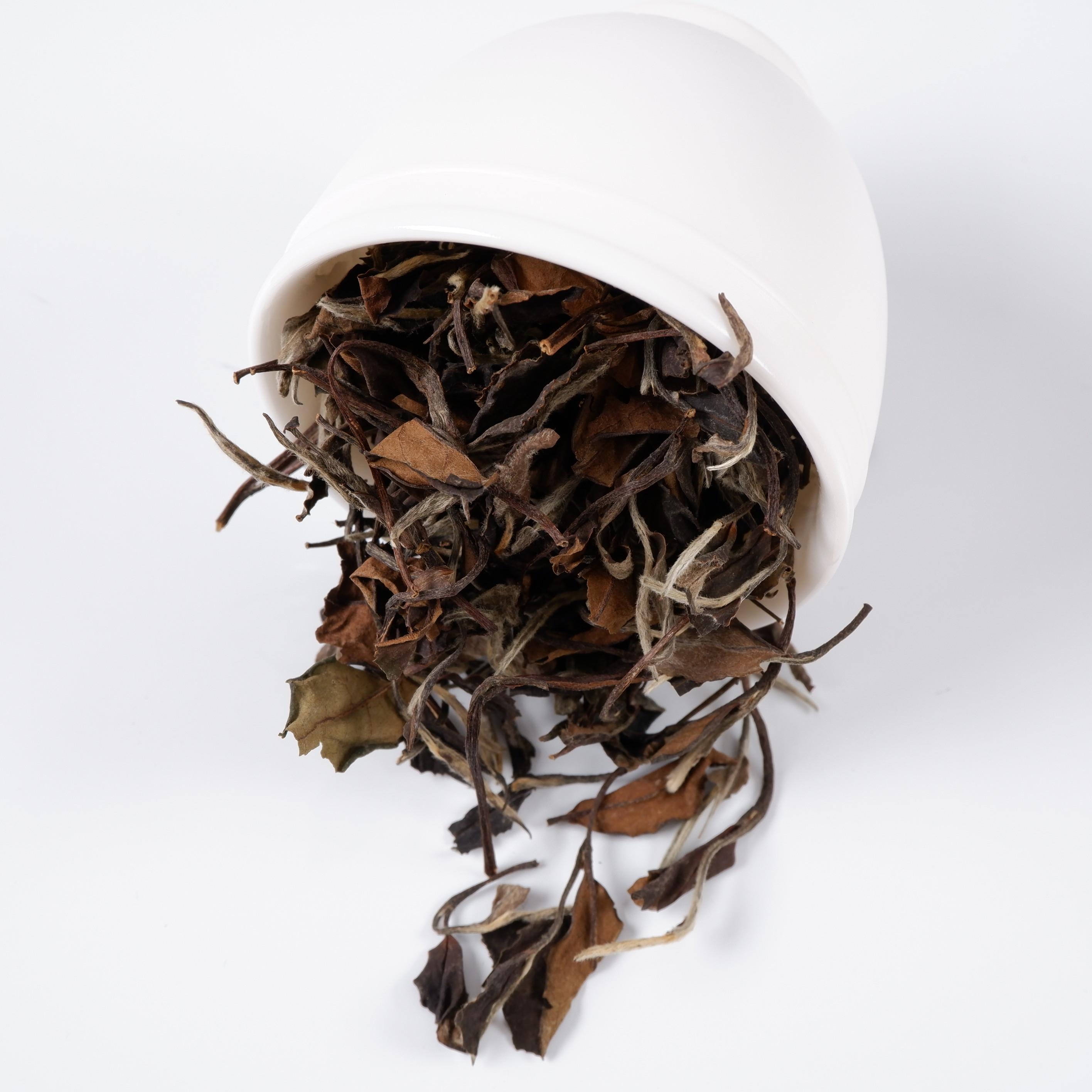 High quality Old White tea Shoumei with bulk - 4uTea | 4uTea.com