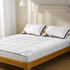 Factory wholesale cheap luxury 100% cotton bed mattress pad hotel bed mattress from China