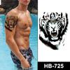 HB-725