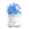 US plug-Blue Hydrangea