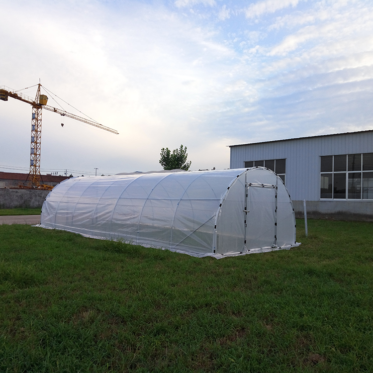W26'xL30'xH13' outdoor plastic film vegetable tunnel greenhouses