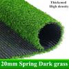 20ミリメートル春ダーク草