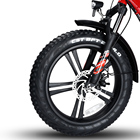 Electric 48v 350w RWD Snow Tire Folding Electric Bike City Mountain Fast High Quality Electric Bicycle