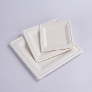 Biodegradable Sugarcane Bagasse Square Plate 10 Inch