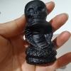 Snake skulls (c)