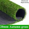 20ミリメートル秋の草