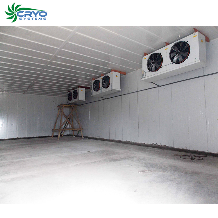 beef tripe fresh chicken packaging cold storage room vegetable keeprite walk in freezer cold store container