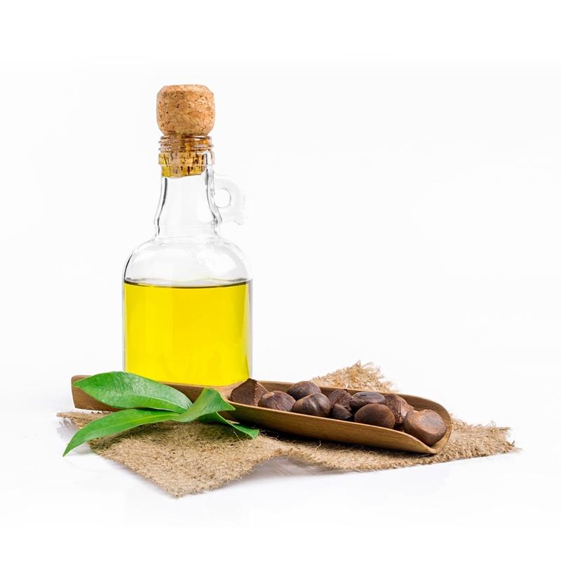 Оптовая продажа с фабрики, органические семена камелии, экстракт холодного прессования, 100% чистое натуральное масло камелии