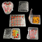Disposable Plastic Tray Plastic Plastic Disposable Tray Wholesale Transparent Disposable Food Plastic Tray Clear Plastic Food Container