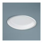 Working Plate Fast Food Trays Working Compartment Dry Fruit Tray Sugarcane Oval Plate