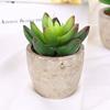 Green -Stone Lotus