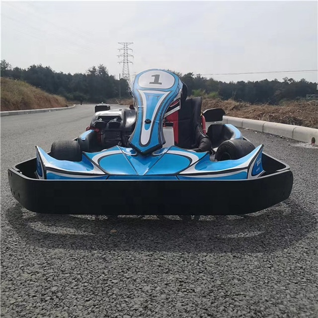 200cc Engine Adult / Kids Racing Electric Go Karts Karting Cars for Sale