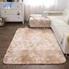 Fluffy rug 2