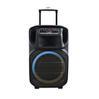 2021 Popular Private Series 12 Inch BT Speaker with USB Voice Aux