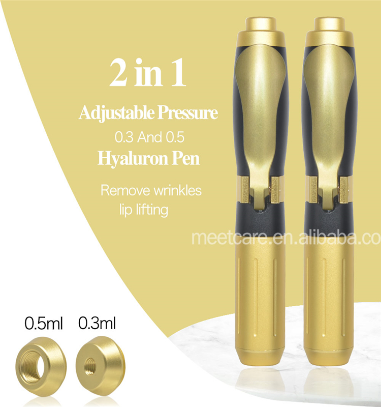 Two Heads Handheld Hyaluron Pen No Needle Lip Injection for Anti Wrinkle Lip Lifting Hyaluron Gun Lip Injector