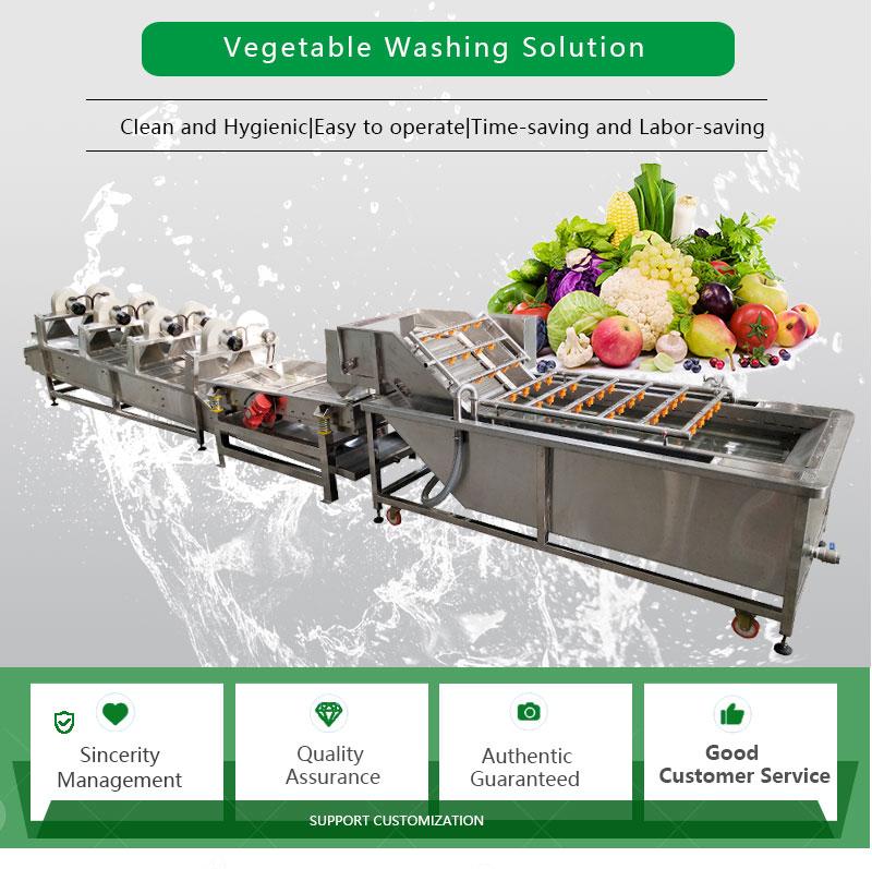 vegetable-washer_01