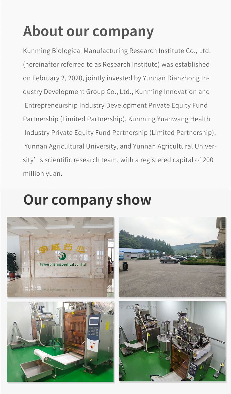 Healthy Natural High Quality Notoginseng Lemon Tea Chinese Supplier Organic Tea for Health Drink - 4uTea | 4uTea.com