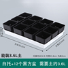 White tray with black pots