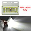 White + White 12V