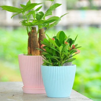 Wholesale Colorful pots for plants decorative Indoor gardening Plants Pot.Multiple specifications bonsai flower pots
