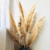 Amazon Top Seller Decoration Dried Flowers White Brown Pampas Grass Large Pampas Grass For Home or Weddings Decoration Yunnan