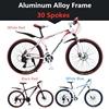 एल्यूमीनियम मिश्र धातु फ्रेम 30 प्रवक्ता