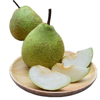 bulk fresh sweet yet tart shandong pear and health