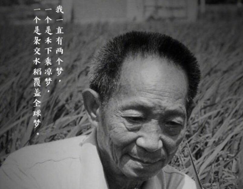 名人对袁隆平评价的句子