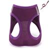 Purple chest strap+leash