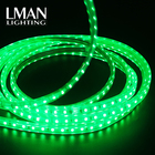 Addressable outdoor waterproof IP65 SMD5050 RGB dream colour AC 110V 220V rgb led strip