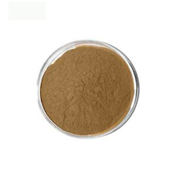 Zhongfa Supplier Bulk Price Pure Powder Extract Tongkat Ali with best price