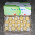 Pear Pear Fresh Crown Pear Whole Sale Price Direct From Factory Sweet Delicious Natural Nashi Pear/Century Pear/Asian Pear